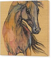 The Bay Arabian Horse 9 Wood Print