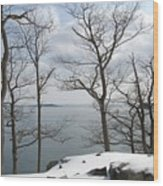 The Bay In Winter Wood Print