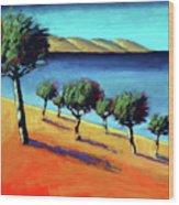 The Bay Wood Print