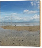The Beach At Helnaes Wood Print