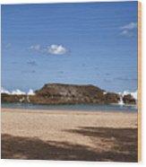 The Beach At Vega Baja Puerto Rico Wood Print