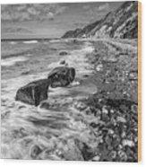 The Beach. Wood Print