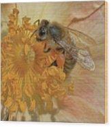 The Beautiful Bee Wood Print