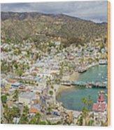The Beautiful Catalina Island Wood Print