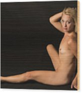 The Beautiful Female Nude Fine Art Prints Or Photographs  4260.0 Wood Print