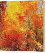 The  Beauty Of Autumn Wood Print