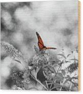The Beauty Of Orange Wood Print