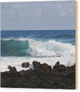 The Beauty Of The Sea Wood Print