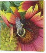 The Bee Keeper Wood Print