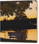 The Bench By The Lake Wood Print by Danielle Allard