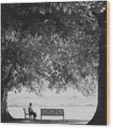 The Bench Man Wood Print