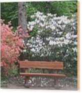The Bench Of Peace And Pleasure Wood Print