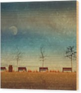 The Benches By The Moon Wood Print
