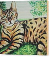 The Bengal Wood Print