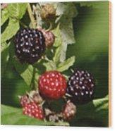 the Berries Wood Print