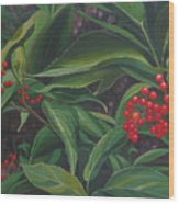 The Berries On Guanella Pass Wood Print