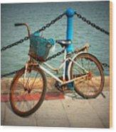 The Bicycle Wood Print