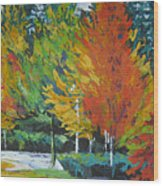 The Big Red Tree Wood Print