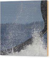 The Big Splash Wood Print