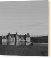The Biltmore Mansion Wood Print