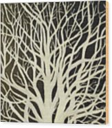 The Birch Tree Wood Print