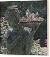 The Bird Bath Wood Print