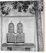 The Bird Cage Palm Springs Wood Print
