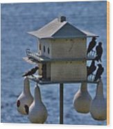 The Bird Hotel Wood Print