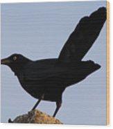 The Black Crow II Wood Print
