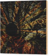 The Black Hole Wood Print