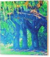 The Blue Live Oaks Wood Print