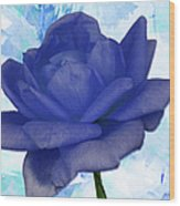 The Blue Rose Wood Print