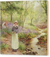 The Bluebell Glade Wood Print by Ernest Walbourn