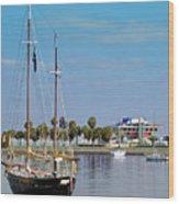 The Boat Wood Print