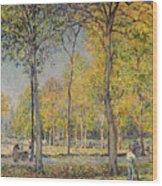 The Bois De Boulogne Wood Print