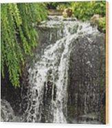 The Botanic Waterfall  Wood Print by Lori Frisch