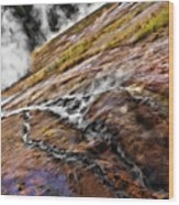 The Bottom Of Midway Geyser Basin Wood Print