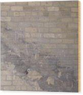 The Brick Wall - Historic Bldg Wood Print