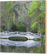 The Bridges In Magnolia Gardens Wood Print