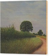 The Brighter Road Ahead Wood Print