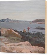 The Bronx Rocky Shore Wood Print