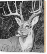 The Buck Wood Print