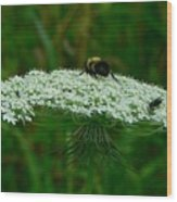 The Bumblebee And The Fly Wood Print