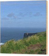 The Burren Pathway Along The Cliff's Of Moher Wood Print