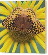 The Butterfly Effect Wood Print