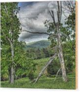 The Buzzard Trees Wood Print