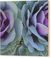 The Cabbage Patch Wood Print