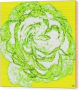 The Cabbage Rose Wood Print