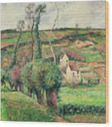 The Cabbage Slopes Wood Print