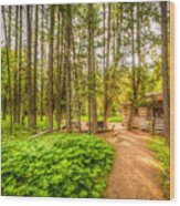 The Cabin In Montana Wood Print